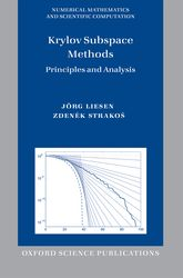 Krylov Subspace Methods: Principles and Analysis