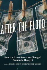 After the FloodHow the Great Recession Changed Economic Thought