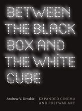 Between the Black Box and the White CubeExpanded Cinema and Postwar Art