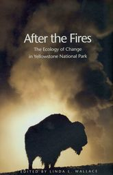 After the FiresThe Ecology of Change in Yellowstone National Park